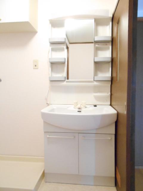 エクセルガーデン 206号室の洗面所