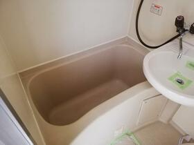 メゾン・ド・シャンテ 0315号室の風呂