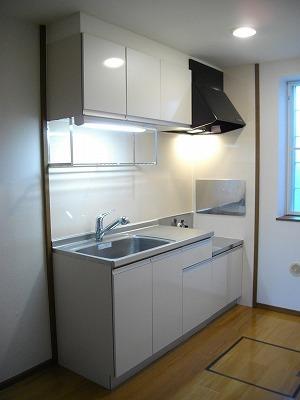 ヴィラ清水Ⅱ番館 01010号室のキッチン