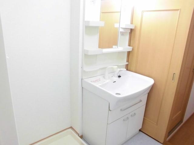 ペイ・ナタルA 02010号室の洗面所