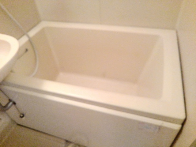 シティハイツ丸山 02020号室の風呂