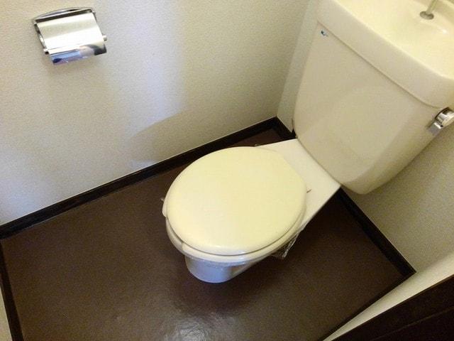 シティハイツ丸山 02020号室のトイレ