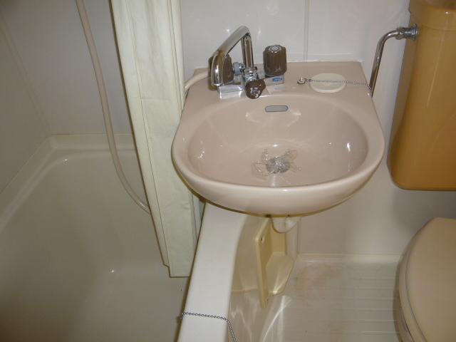 メゾン・ド・KS 202号室の洗面所