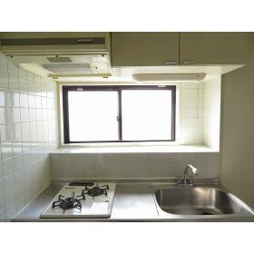 ダイホープラザ桜台 0402号室のキッチン