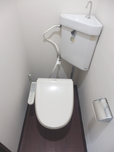 サンテラス藤田 205号室のトイレ