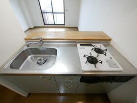 ペイサージュ(門真) 103号室のキッチン