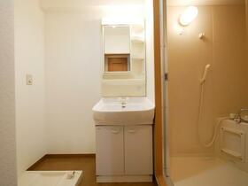 ペイサージュ(門真) 103号室の洗面所