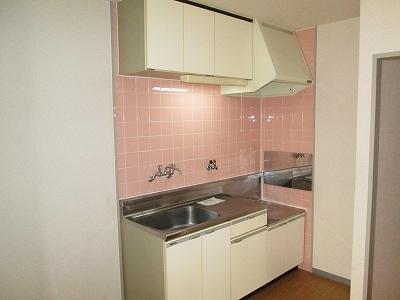 リバ-ハイツ 02010号室のキッチン