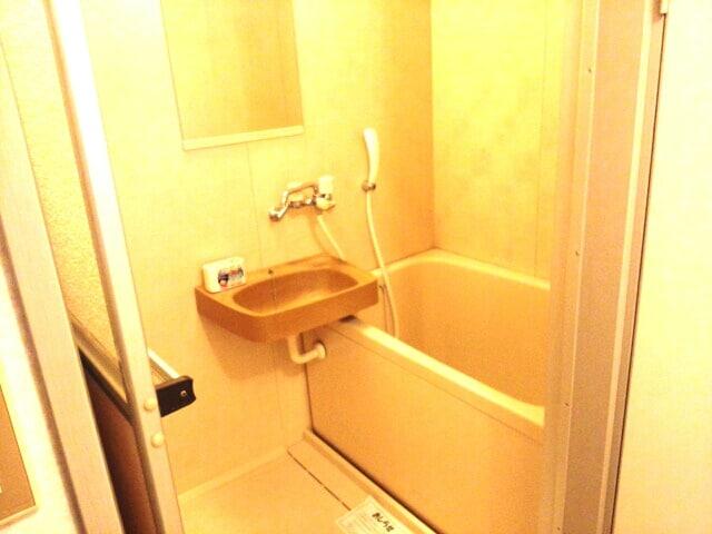 リバ-ハイツ 02010号室の風呂