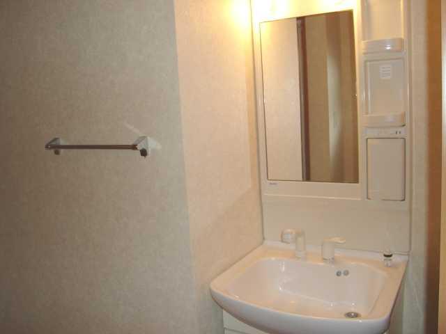 グランディール星の宮 201号室の洗面所
