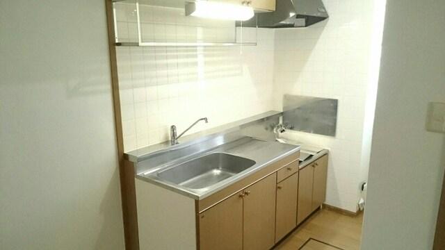シェーネ ホフ Ι 01030号室のキッチン