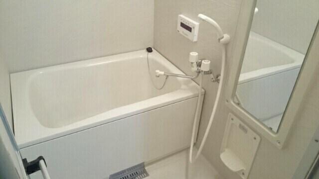 シェーネ ホフ Ι 01030号室の風呂