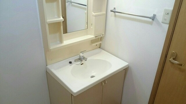 シェーネ ホフ Ι 01030号室の洗面所