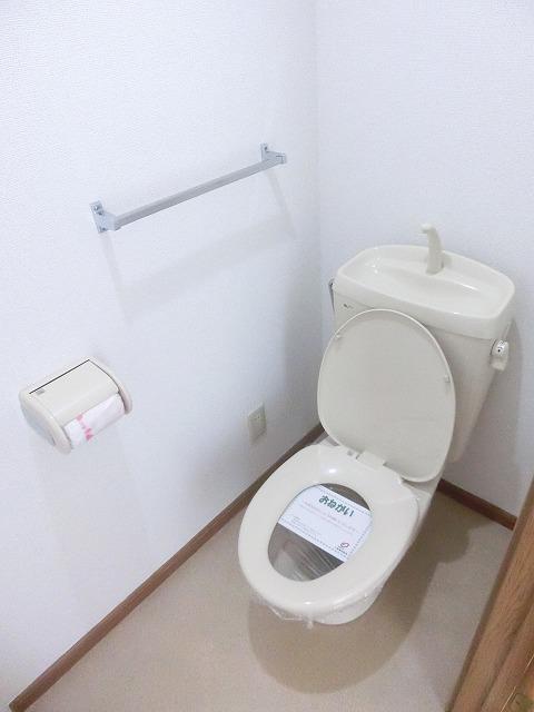 ジャルディーノ・K 01030号室のトイレ