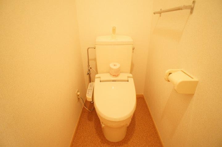 グランシェーヌ 02020号室のトイレ