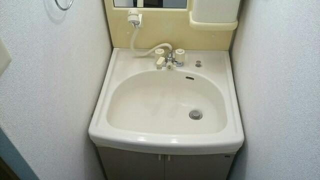 プレミアージュA 01030号室の洗面所