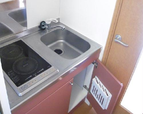 レオパレスパークサイド 202号室のキッチン