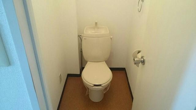 イストワール 03010号室の洗面所