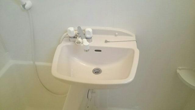 ベルウッドS 02040号室の洗面所