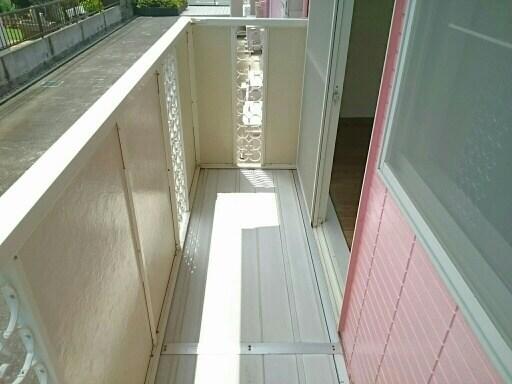 ヘスティア21 01010号室のトイレ