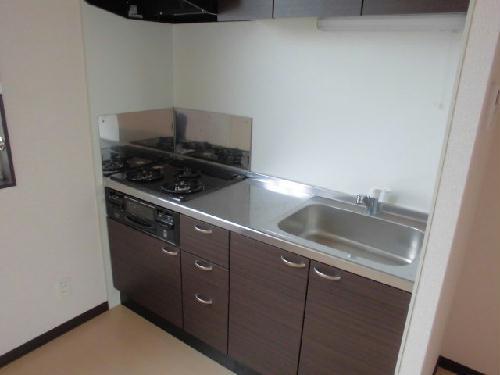 レオネクストミレーユ 106号室のキッチン