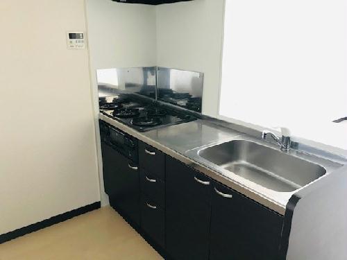 レオネクストアルメリア 204号室のキッチン