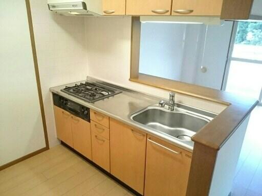 カイラス・ドルフ 01040号室のキッチン