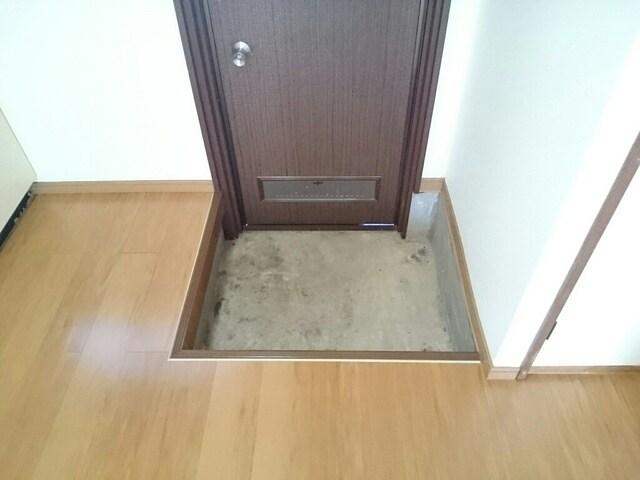 ニュ-弥生坂マンション 01030号室の玄関