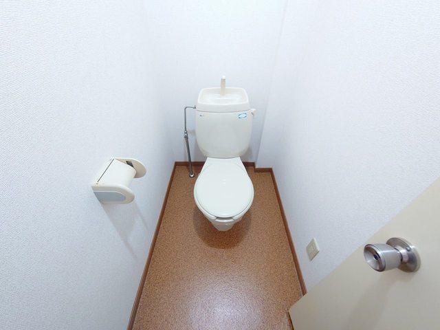 レジデンス海野 03030号室のトイレ