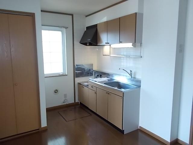サンライトヴィラ 01010号室のキッチン