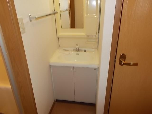 サンライトヴィラ 01010号室の洗面所