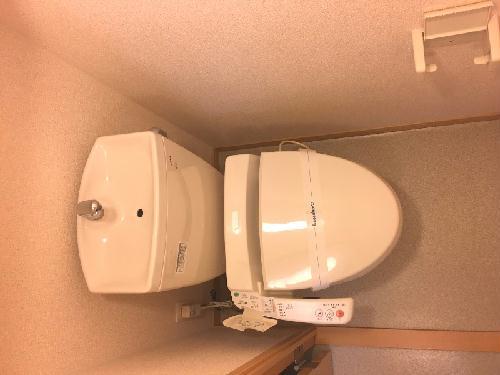 レオネクストサーフサイド海誠 201号室のトイレ