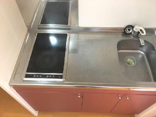 レオネクストサーフサイド海誠 201号室のキッチン