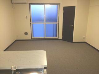 レオネクストアルメリア 106号室のリビング