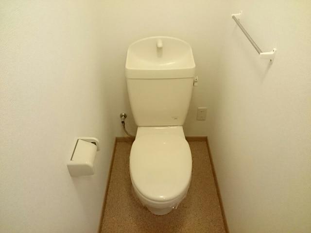 シルフィ 01010号室のトイレ