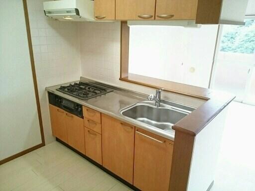 カイラス・ドルフ 03020号室のキッチン