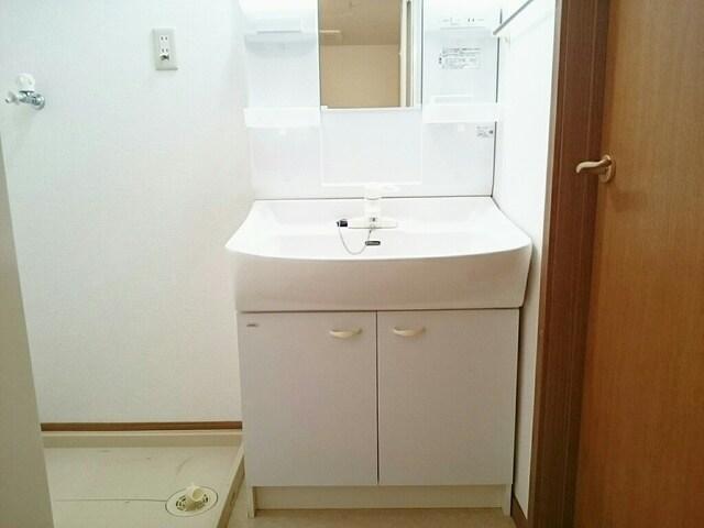 カイラス・ドルフ 03020号室の洗面所