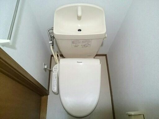 カイラス・ドルフ 03020号室のトイレ