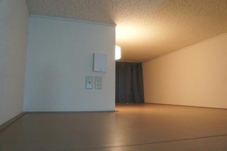 レオパレスCasaAvenue Ⅲ 208号室のその他