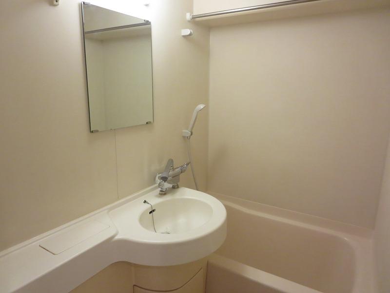 ルーニィ雪ヶ谷 104号室の洗面所