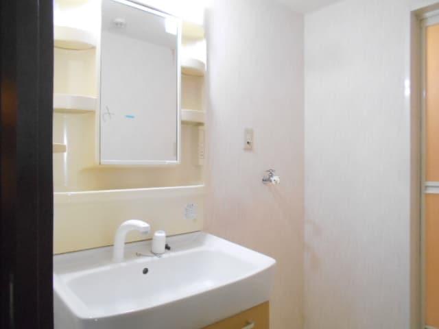 WIZARD 05010号室の洗面所