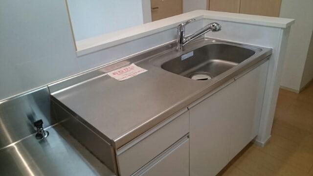 ルガ-トリミテッド1037Ⅱ 01030号室のキッチン