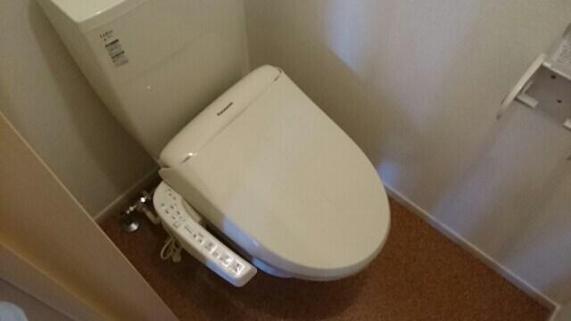 ルガ-トリミテッド1037Ⅱ 01030号室のトイレ