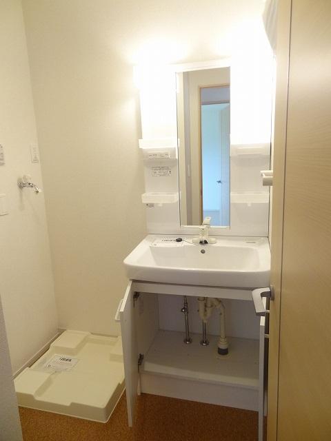パルパレスA 01010号室の洗面所