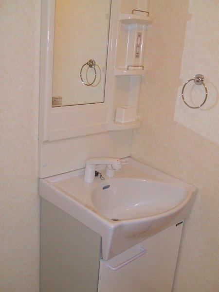 前野ヒルズ 203号室の洗面所
