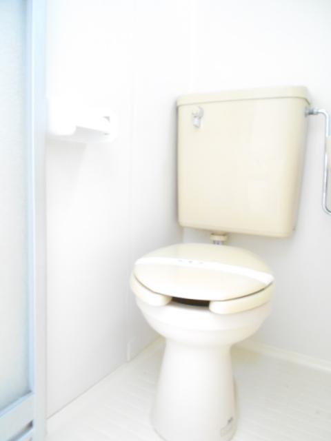 ネットテラス市沢 102号室のトイレ