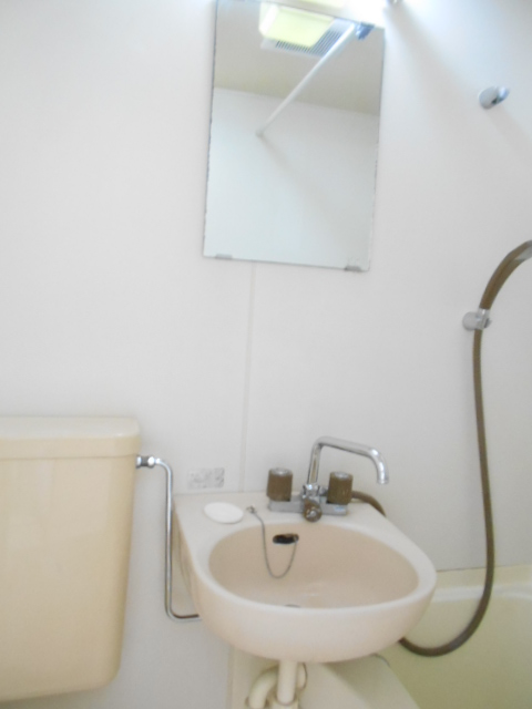 ネットテラス市沢 102号室の洗面所