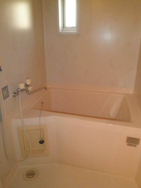 アルカディアプラック B101号室の風呂