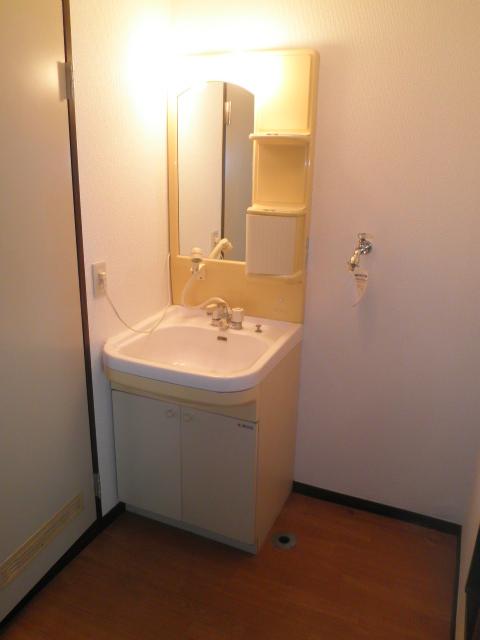 アルカディアプラック B101号室の洗面所