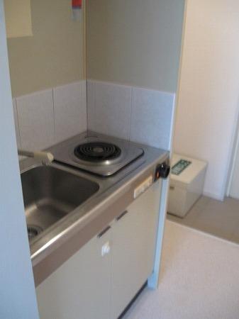 ドルフィン 102号室のキッチン